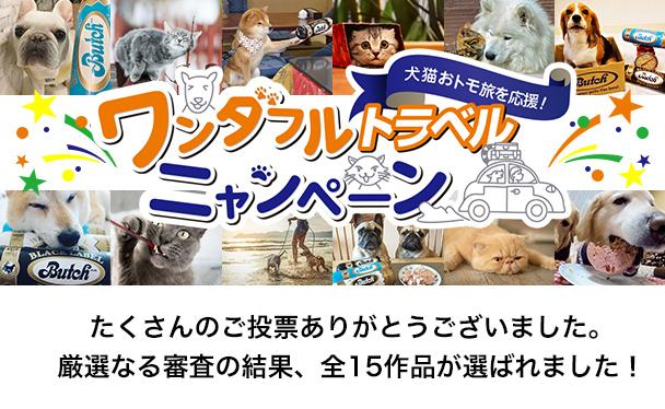 犬猫おとも旅を応援!ワンダフルトラベルにャンペーン